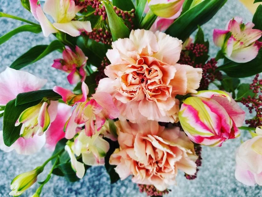 今週のお花「春恋し」