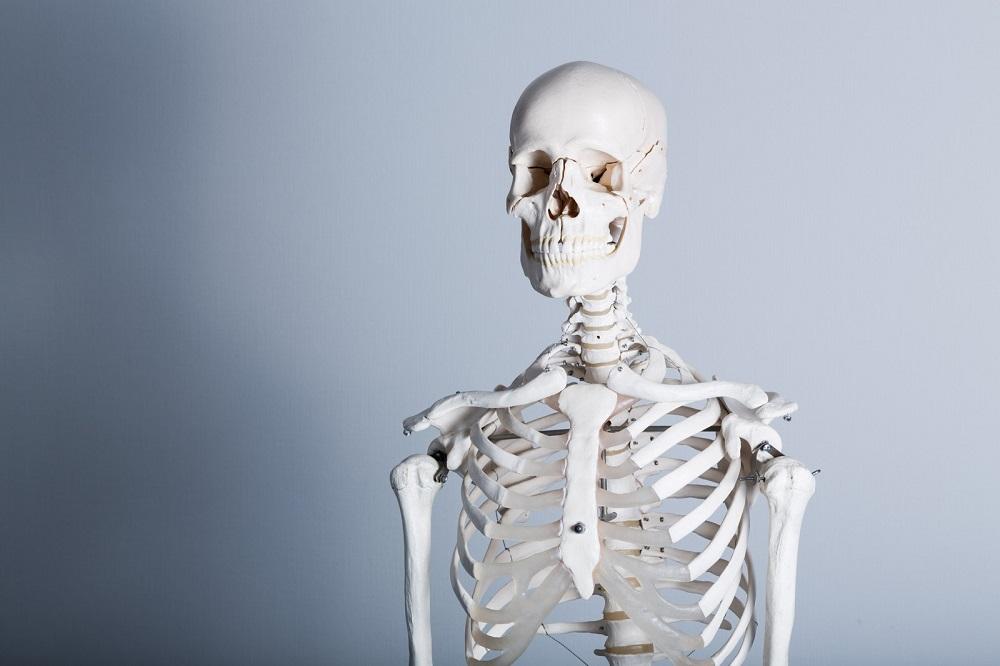 ◆骨粗鬆症のある閉経後女性の新規骨折における テリパラチドとリセドロン酸の効果(VERO)◆