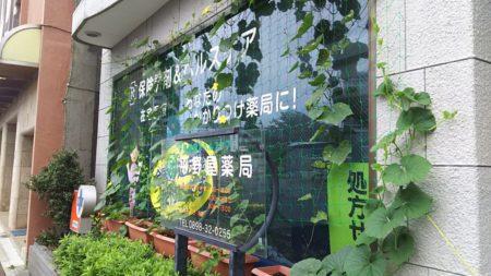 グリーンカーテンプロジェクト