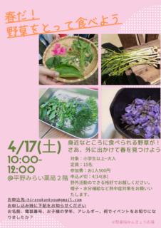 かんきょう広場のおしらせ~春だ!野草をとって食べよう~