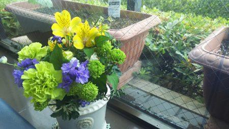 今週のお花~平野屋~